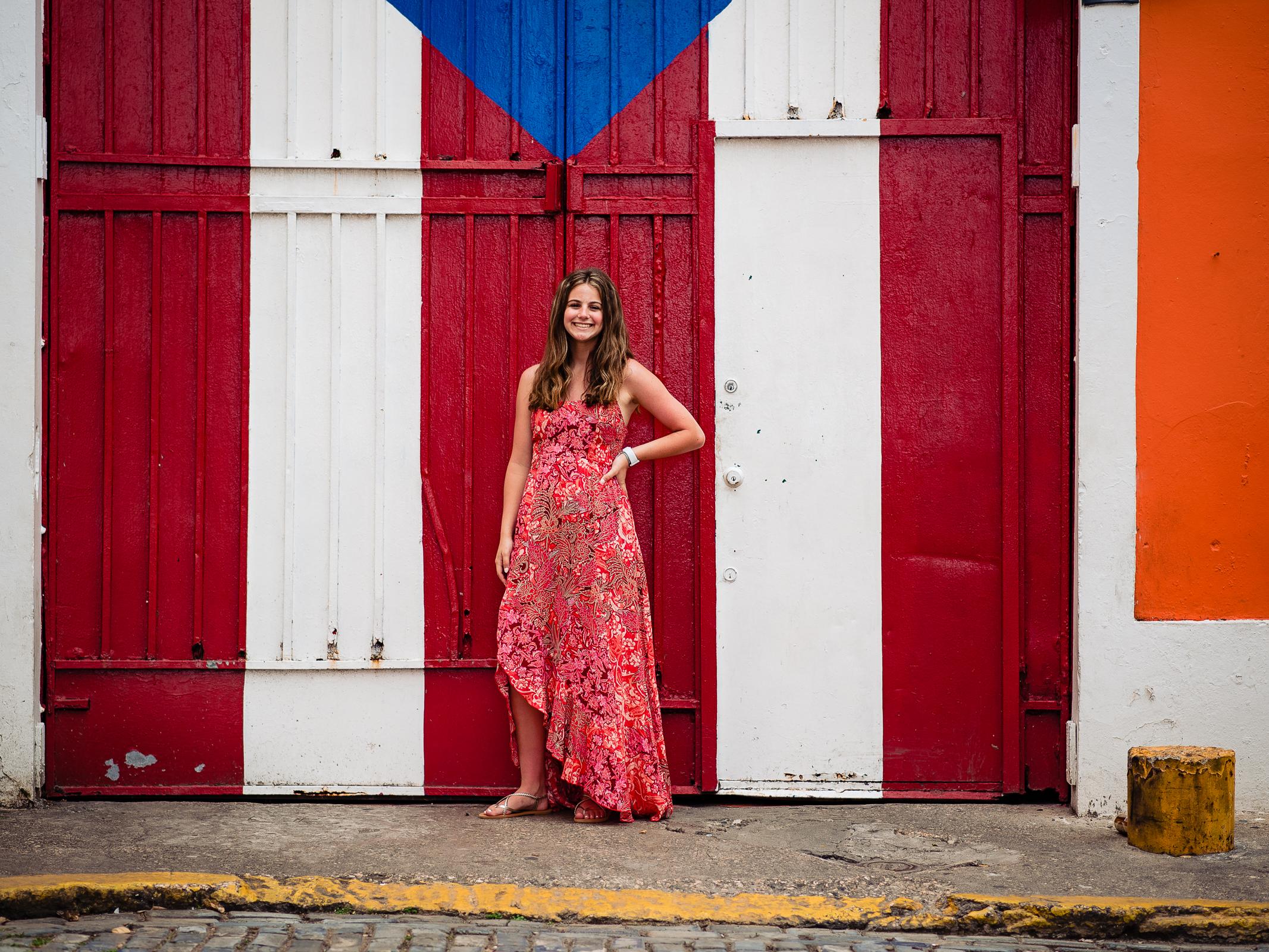 Puerto Rico Flag Door Portrait